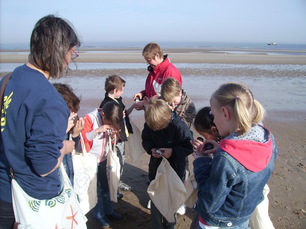 Kinderen kunnen meedoen aan een begeleide schelpenwandeling, gevolgd door een knutselatelier.