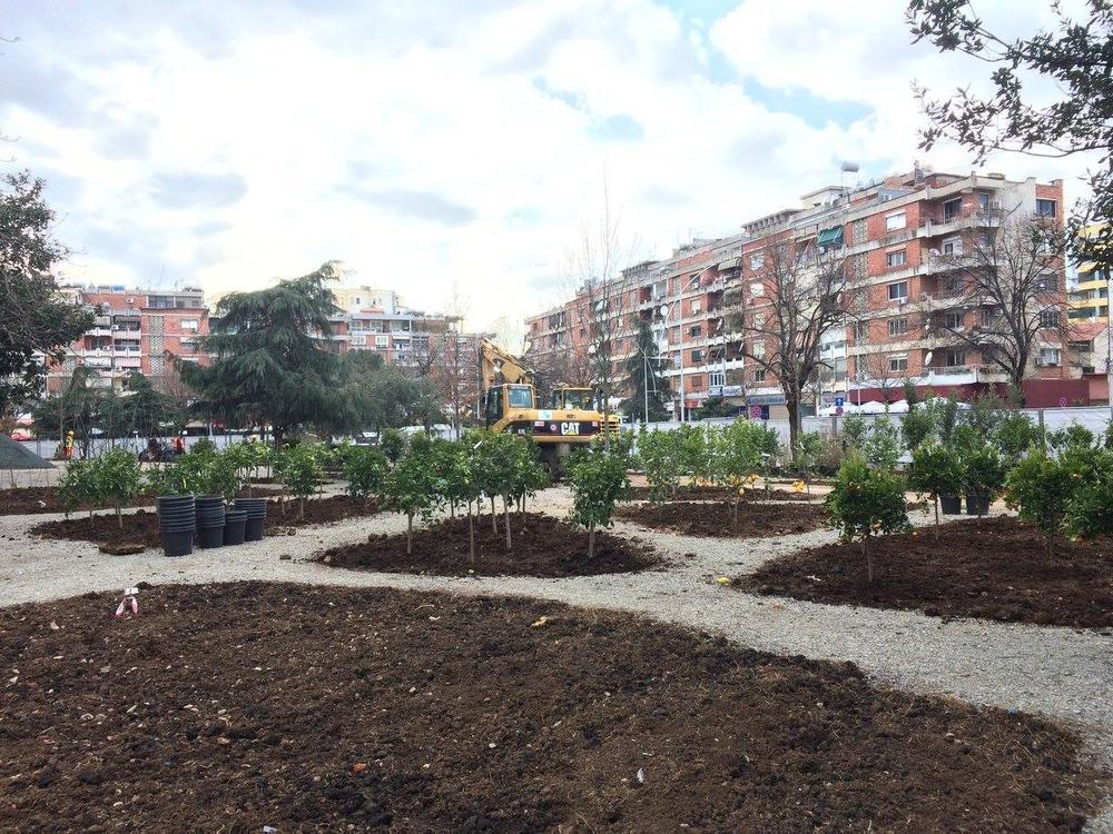 Jeroen uit Roeselare zorgt voor groene heraanleg van centraal plein in hoofdstad van Albanië