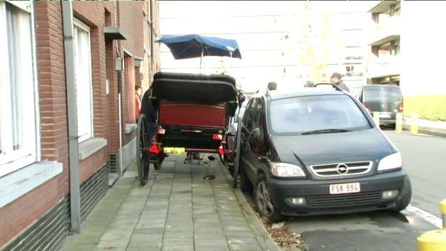 Paard slaat op hol en beschadigt auto's