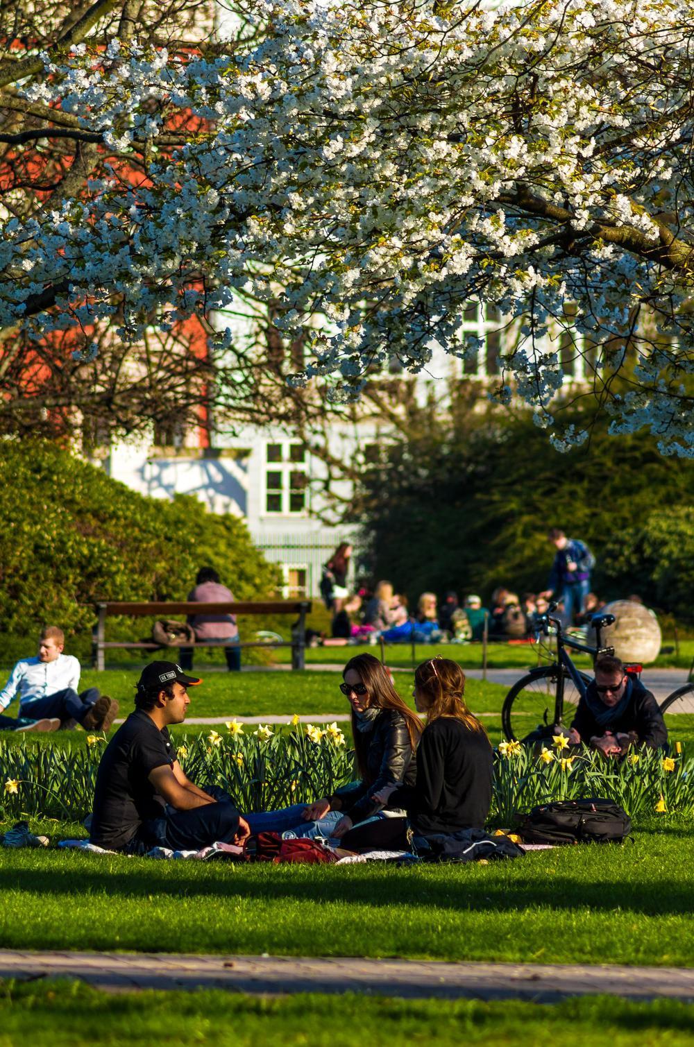 Kongens Have is Kopenhagens oudste en meest bezochte stadspark.