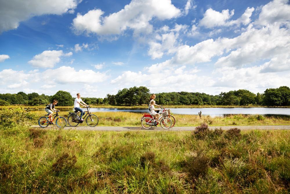 Ontdek Drenthe, de natuurprovincie