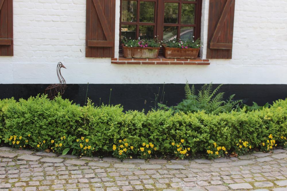 Ingeborg en Ivan vonden in 2011 het huis van hun dromen in een rustige omgeving waar ze voldoende ruimte hebben voor een leven in de natuur.