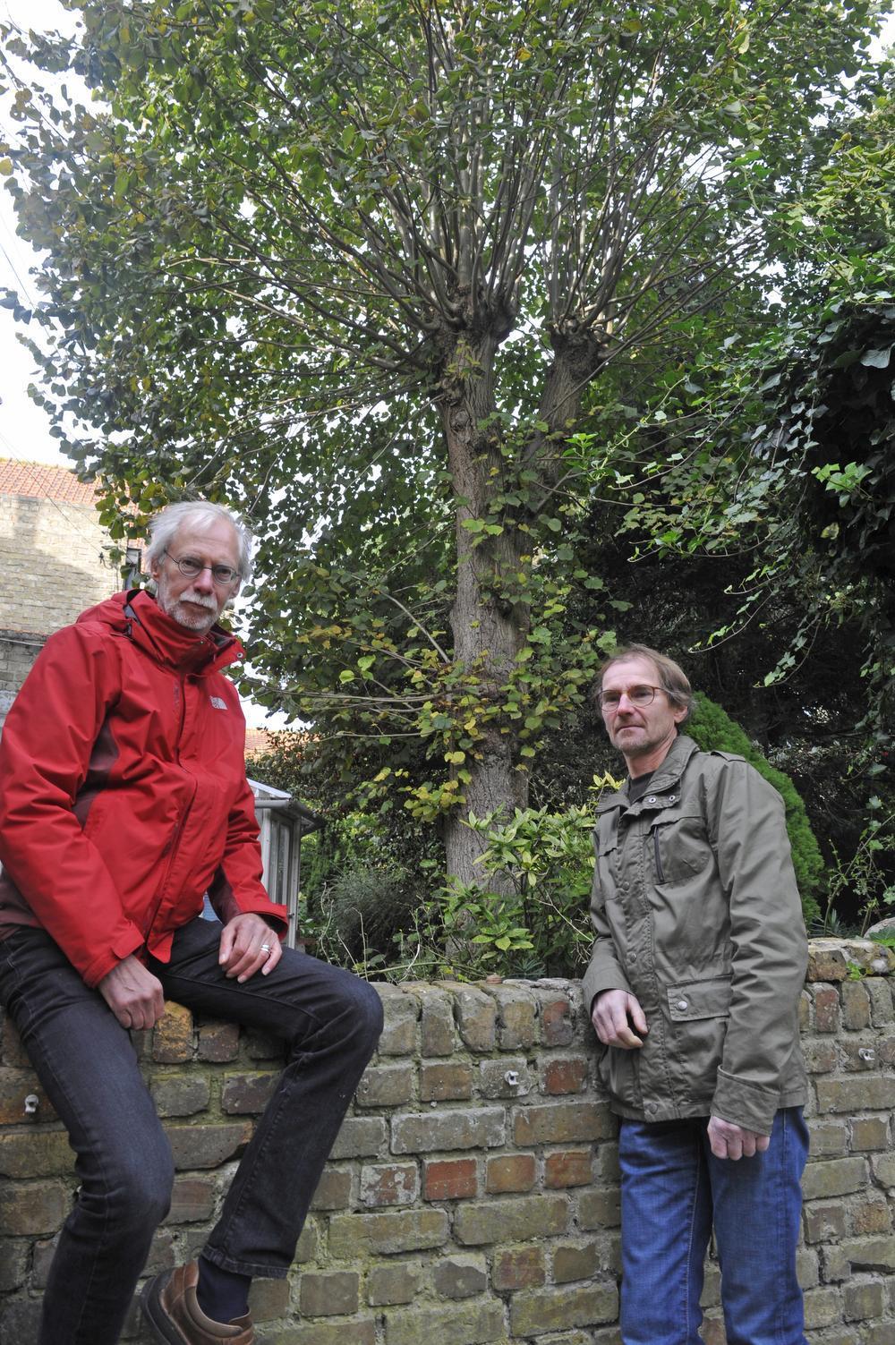 Luc Leye en Mark Van Landtschoote (rechts) bij de oude Lindenboom, waaraan Marks overgrootvader de plek van zijn boerderij herkende.