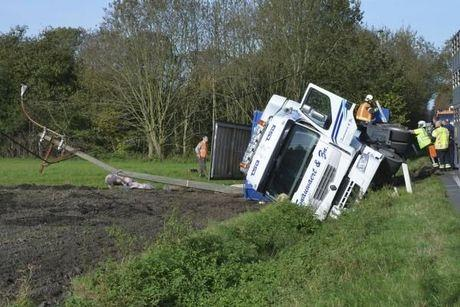Vrachtwagen kantelt met varkens op weg tussen Beernem en Wingene