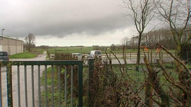 Paardenfokster uit Torhout ontkent dat ze stalknecht uitbuitte, ze gaat in beroep