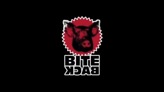 Dierenrechtenorganisatie Bite Back toont varkensleed in landbouwbedrijven uit Pittem, Ardooie en Wingene