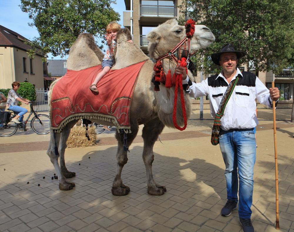 Kleuter Wolf was helemaal in zijn sas tussen de kamelenbulten