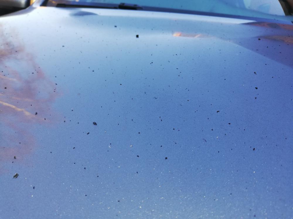 Ook meerdere auto's in Gullegem zijn bezaaid met roetdeeltjes.