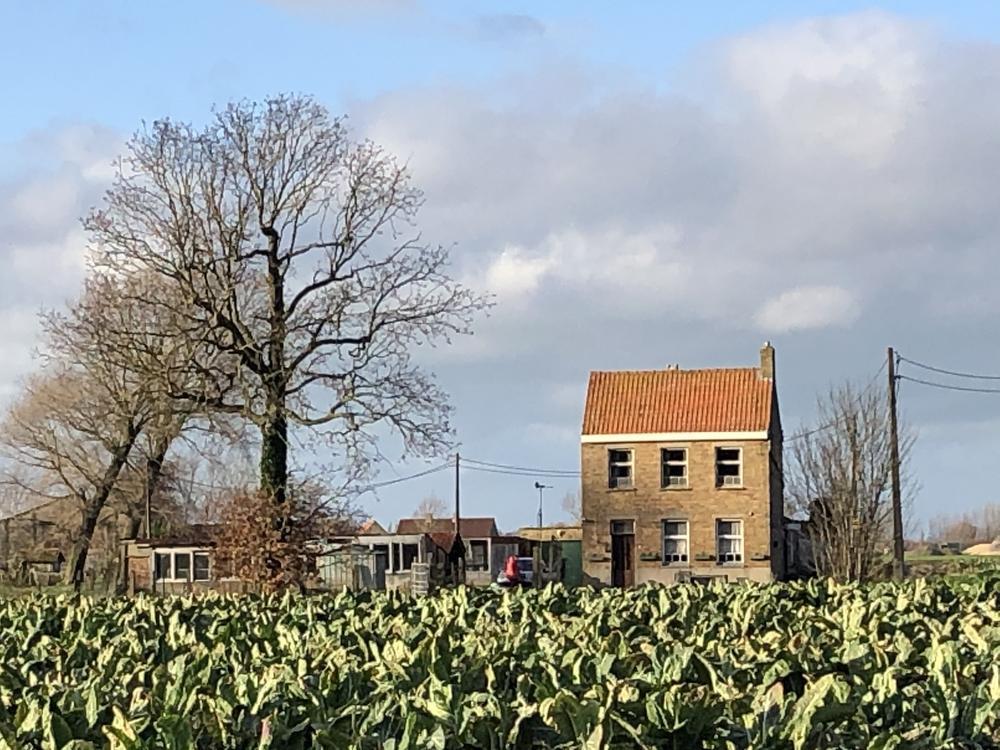 10.000 stappen in Alveringem: