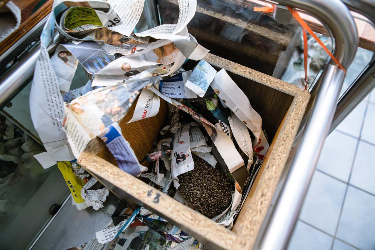 De kranten worden niet enkel gebruikt als bodembedekking in de kooien, maar ook als nestvulling voor egels en eekhoorns.