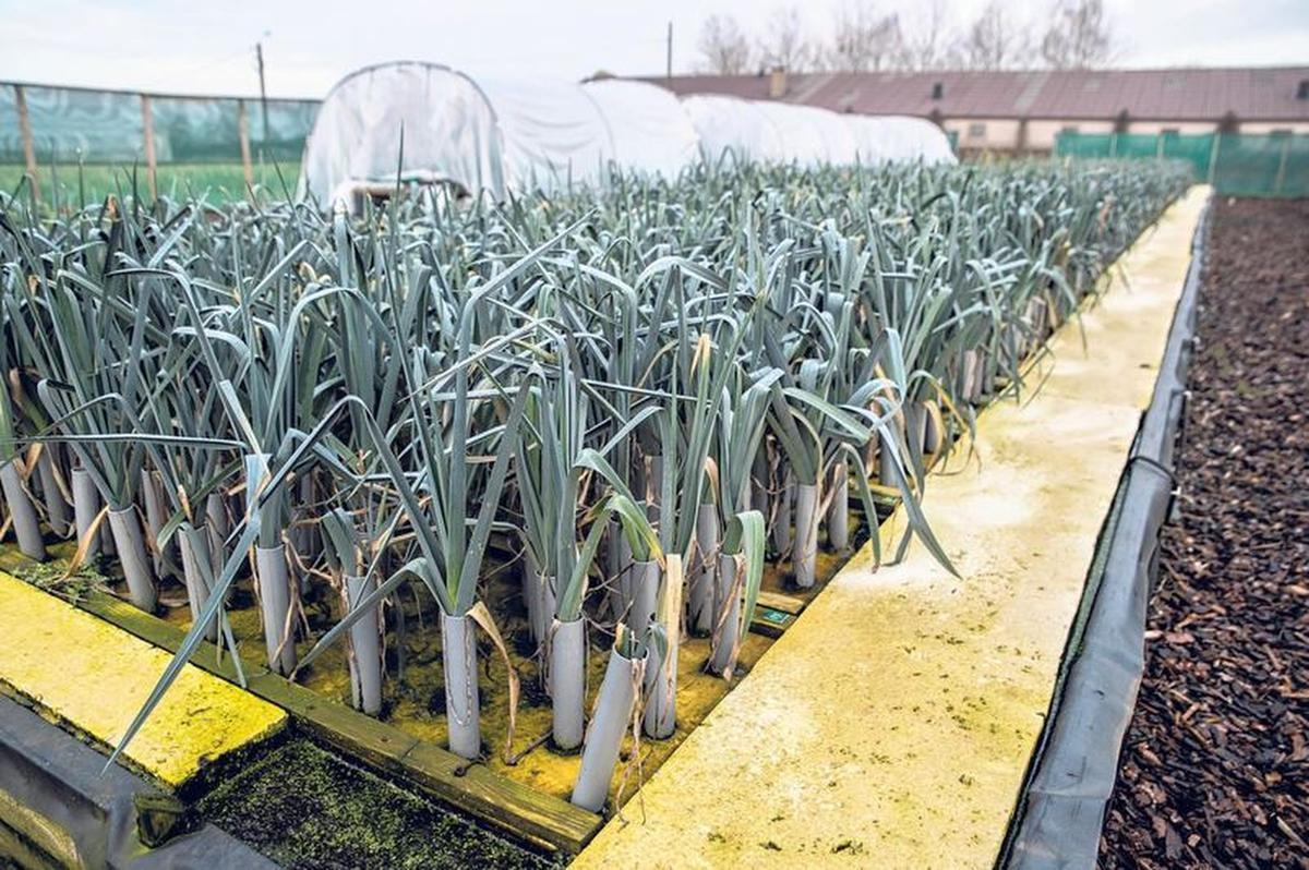 Zo werken onze boeren morgen: de nieuwste technieken onder de loep