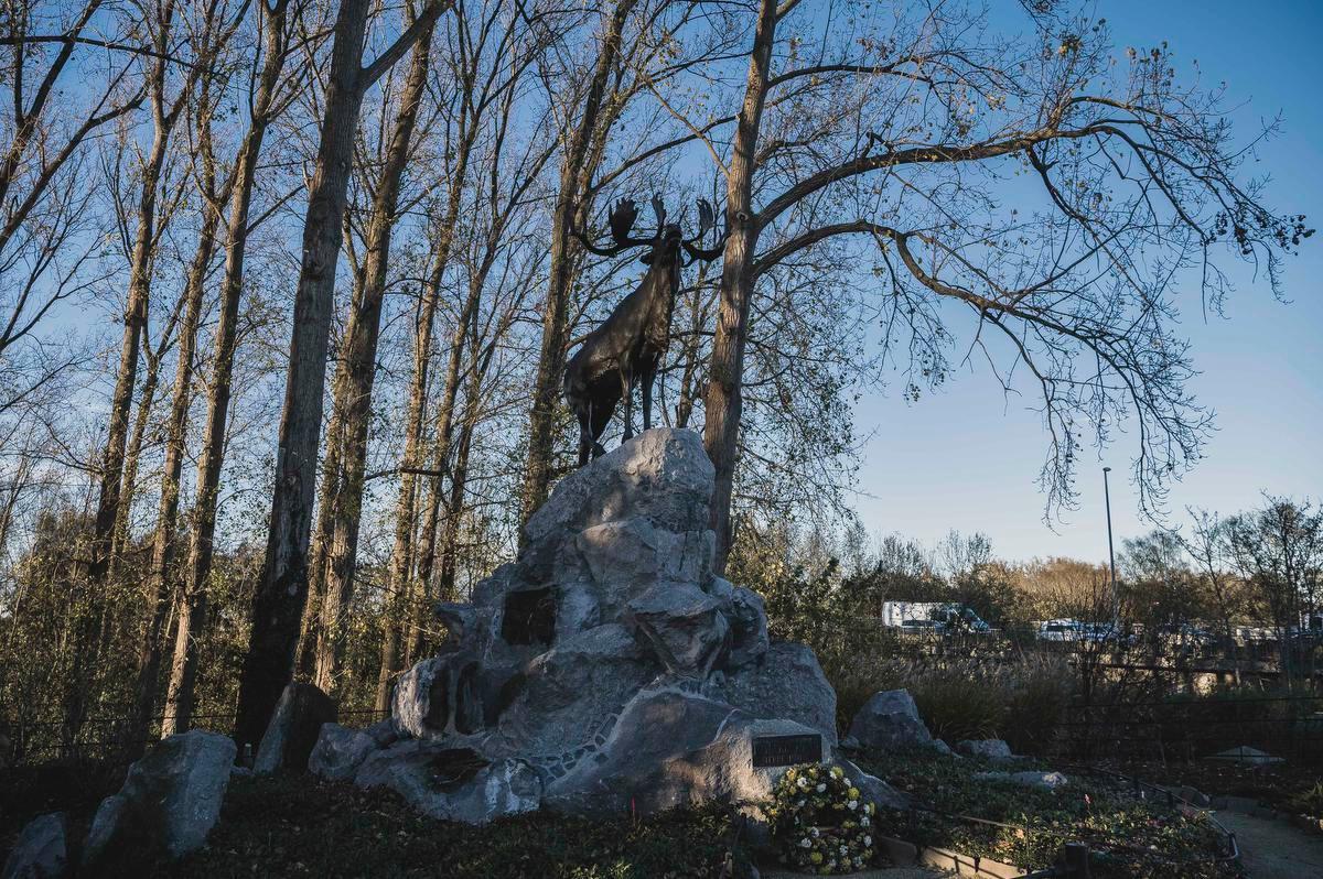 Het standbeeld van het rendier ter ere van de gevallen Canadese soldaten zal bij een keuze voor het ringtracé moeten verhuizen.