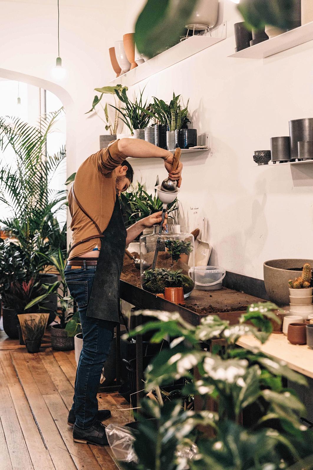 plantenwinkels