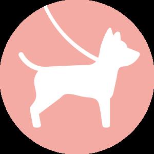 Honden toegelaten