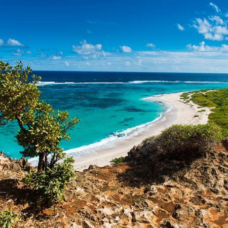 Barbuda (Caraïbes)
