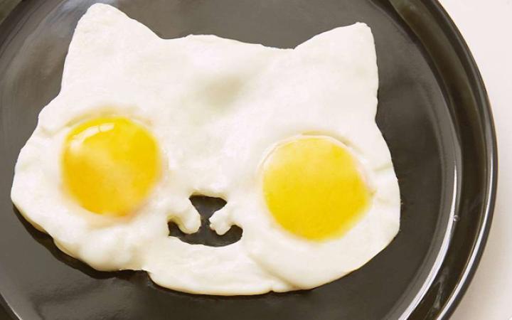 Rauwe eieren, zachtgekookt eitje, spiegelei