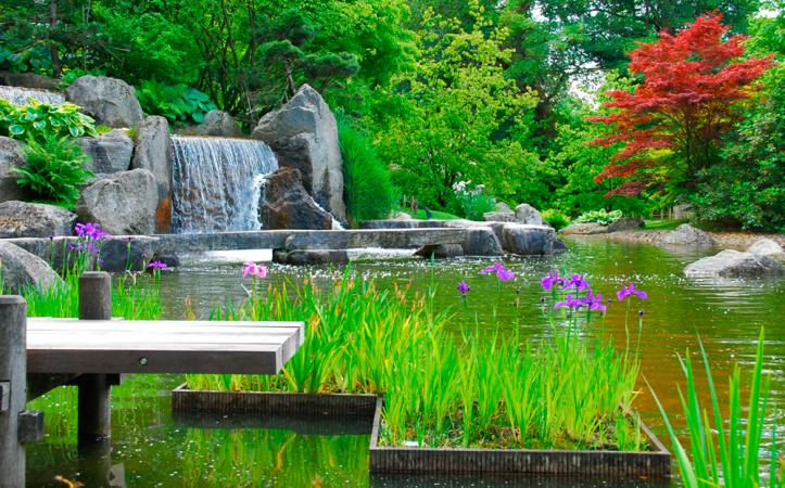Jardin Japonais – Hasselt