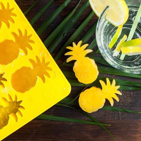 Ananasijsblokvormpjes