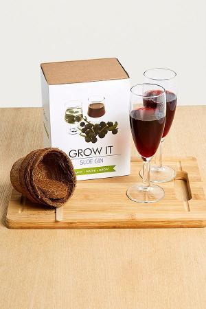 DIY-pakket voor sloe gin