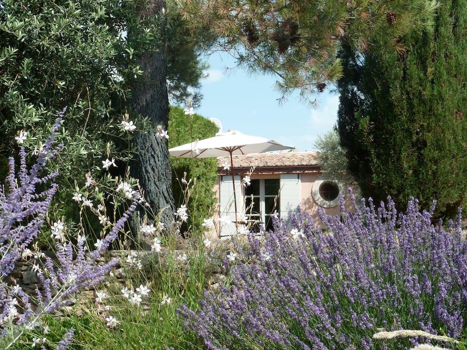 Maison Rose à Gordes, Provence-Alpes-Côte d'Azur