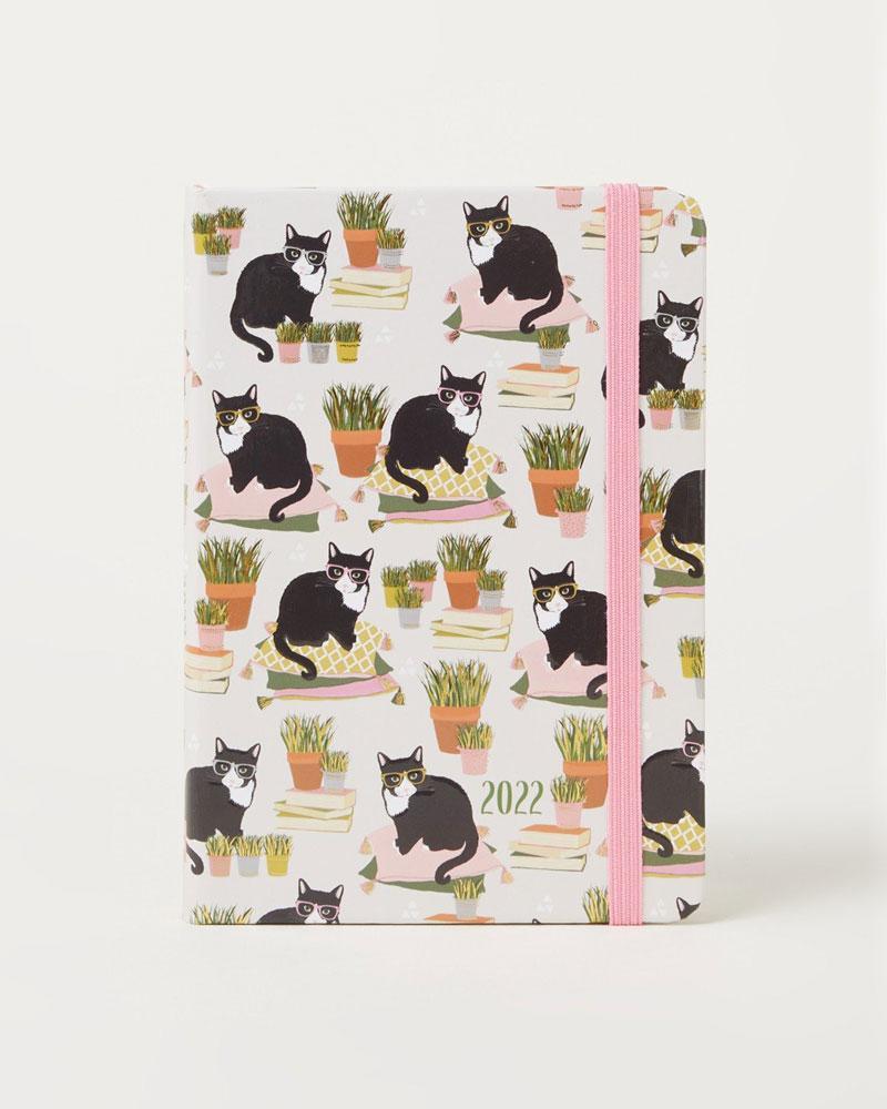 Weekagenda katten