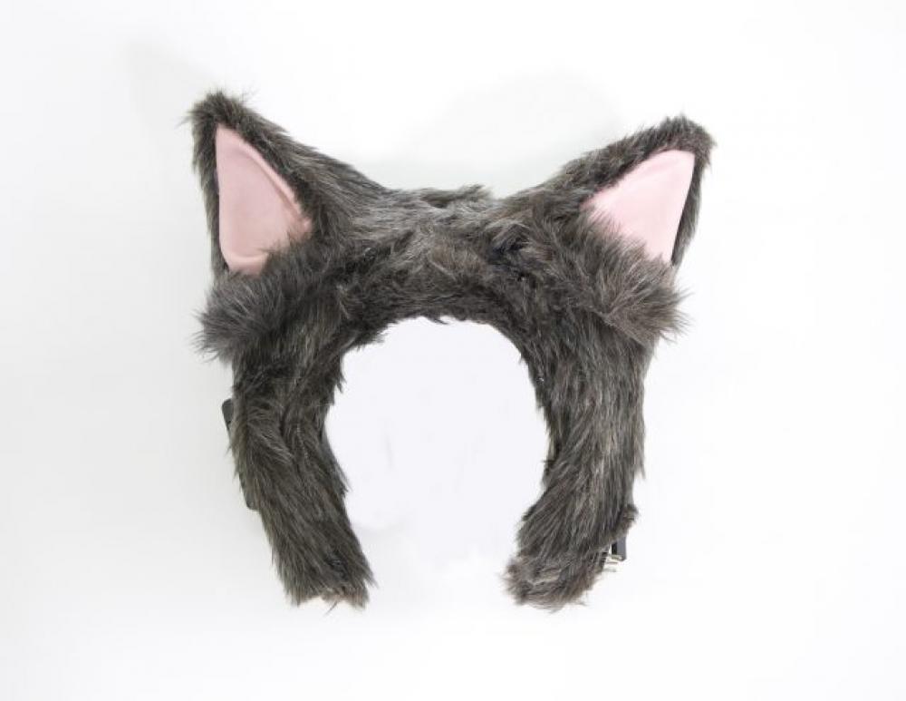 oreilles chat