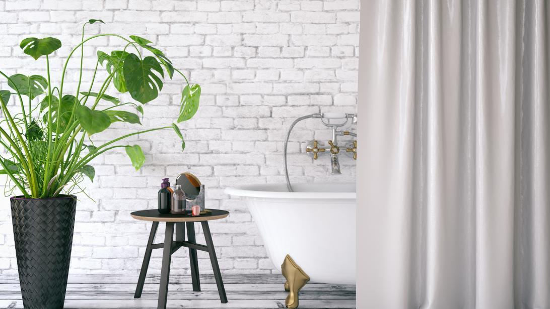 Deco Quelles Plantes Pour Une Salle De Bain Version Green