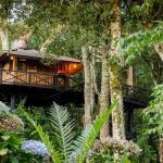 Casa NaÁrvore, Monte Verde, Brésil