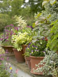 pots alignés dans jardin