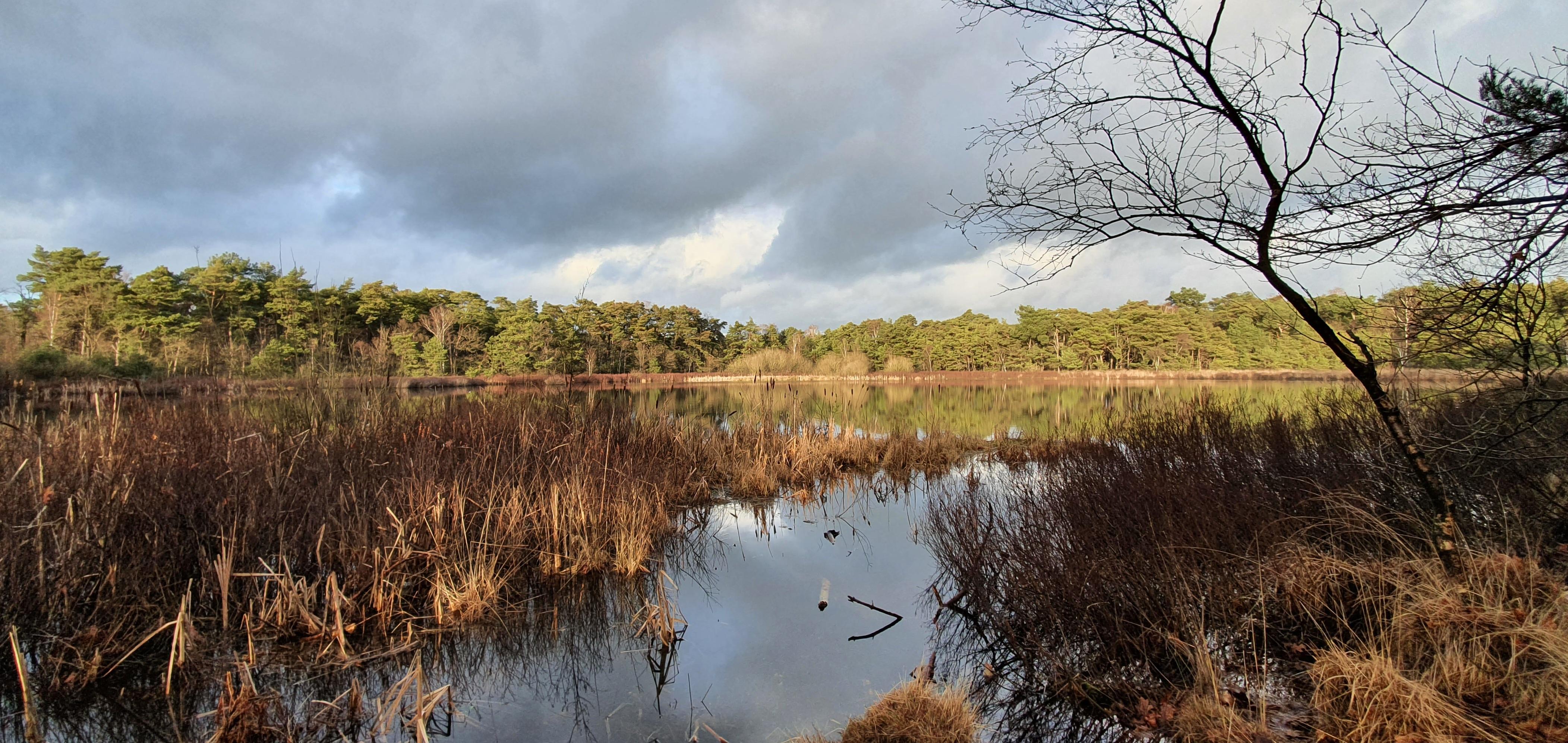 groene plekjes in Herentals