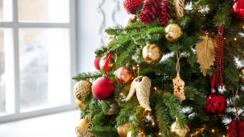 Kerstboom Libelle