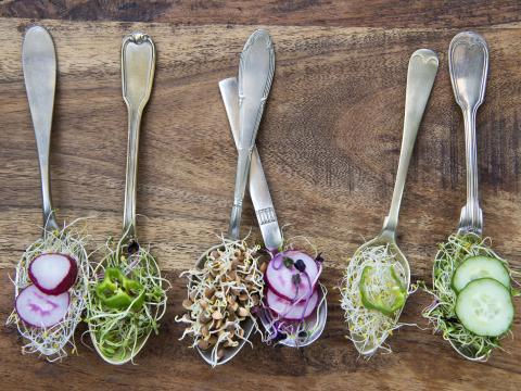 Végétarien, végétalien…. Quelle différence?
