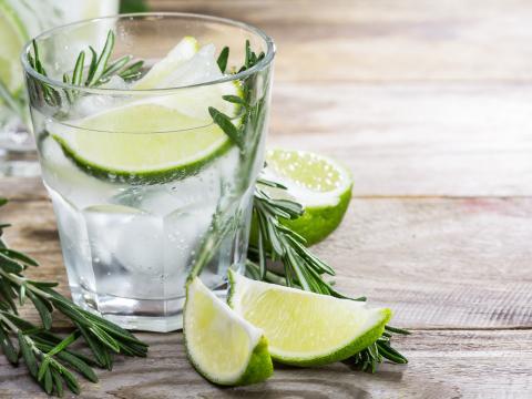 10 zelfgekweekte kruiden om je gin tonic te pimpen