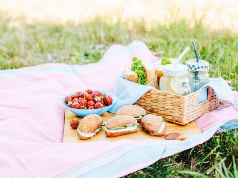 Hoeveel eten moet je voorzien voor een picknick?