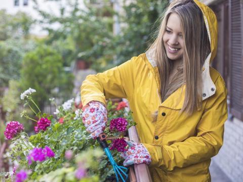 De Vierkante Meter aflevering 4: tuinieren door weer en wind 2