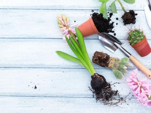 De Vierkante Meter aflevering 4: tuinieren door weer en wind 7
