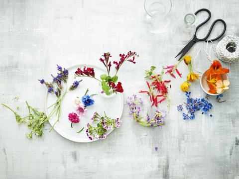 Ken je deze eetbare bloemen al?