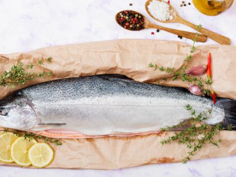 Verse vis: waar moet je op letten?