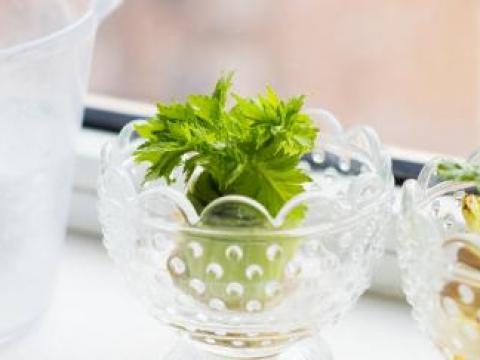 Deze 5 groenten kweek je gewoon op je vensterbank