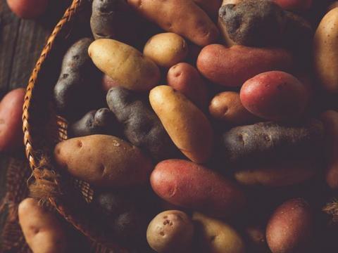 Welke aardappel kies je voor welk gerecht?
