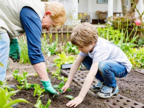 De Vierkante Meter aflevering 4: tuinieren door weer en wind