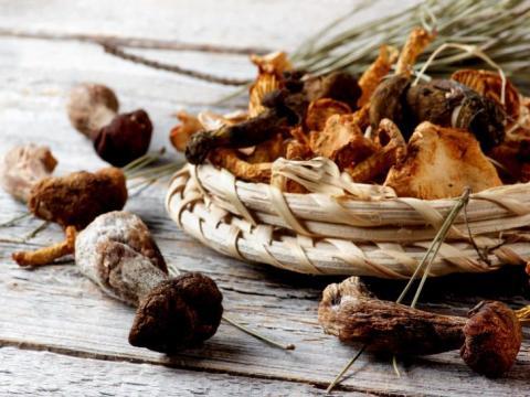 Zo maak je zelf gedroogde paddenstoelen