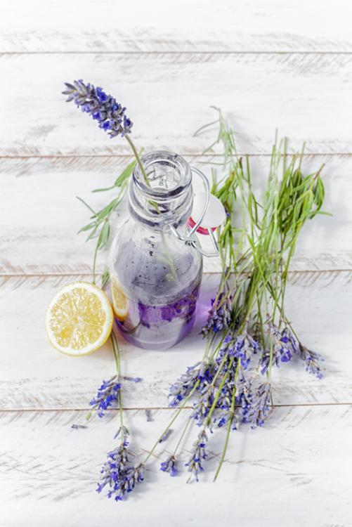 zelfgemaakte limonade kruiden tuin