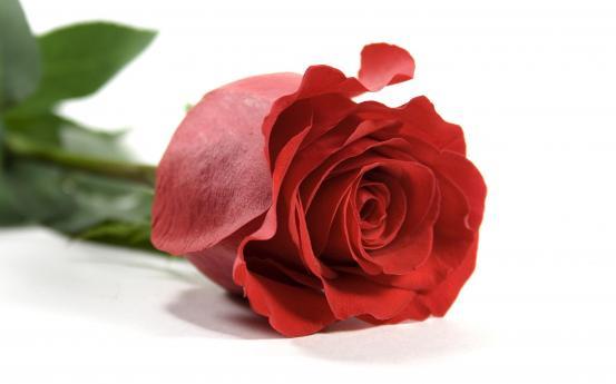Valentijn wishlist redactie