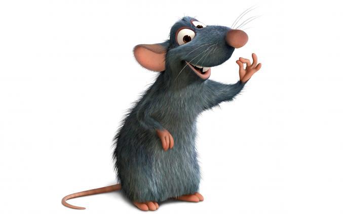 Concours Disney - Ratatouille