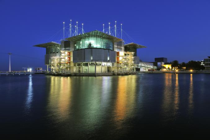 Lisbonne - l'oceanarium