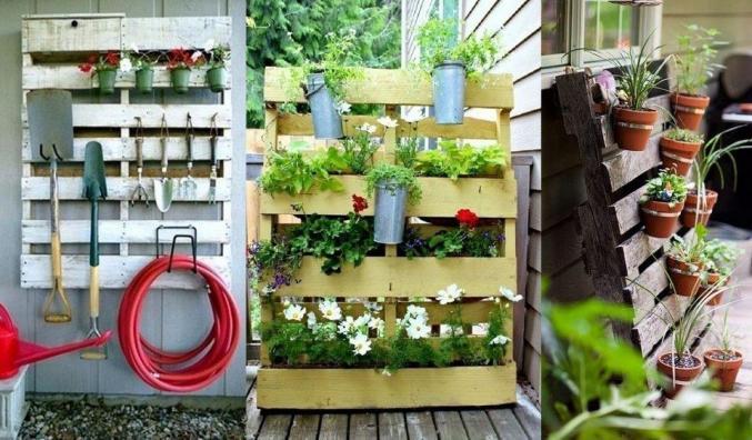 Palettes à plantes