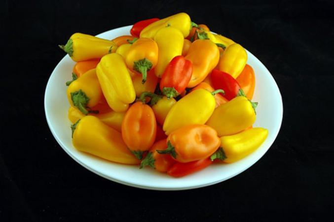 740g de petits poivrons