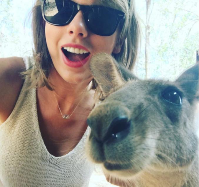 Taylor Swift et un kangourou
