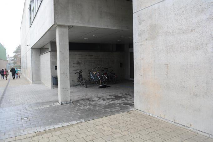 De gemeente organiseert per deelgemeente een afhaalpunt. Voor Wevelgem is dat aan de Porseleinhallen.©Stefaan Lernout SLW